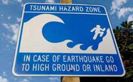 Caribbean Tsunami